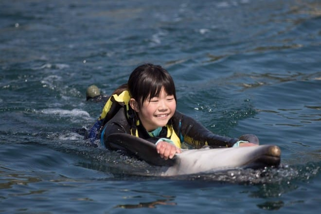 イルカに乗って遊ぶ女の子