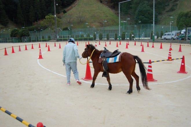 のま馬体験