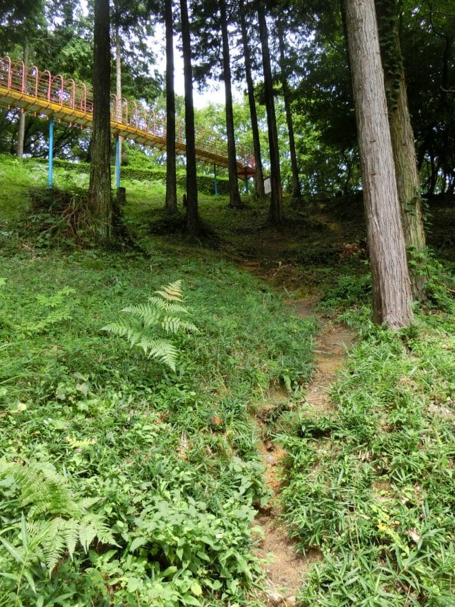 滑り台への道/玉川総合公園