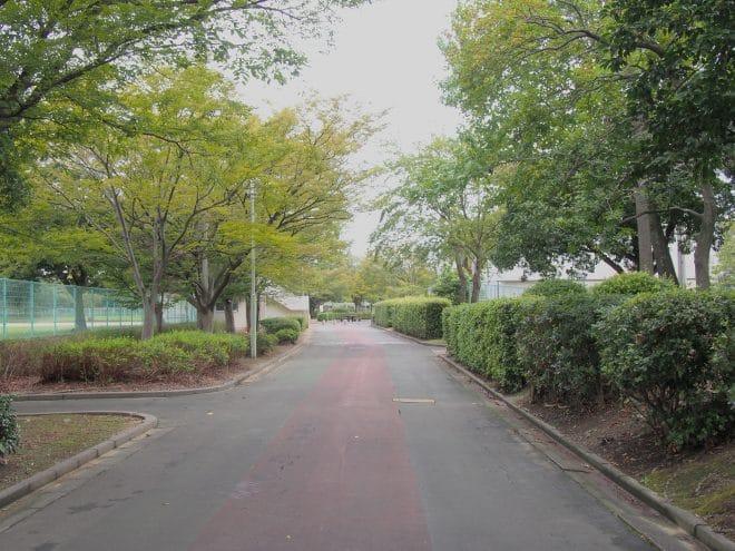 伊予三島運動公園ジョギングコース