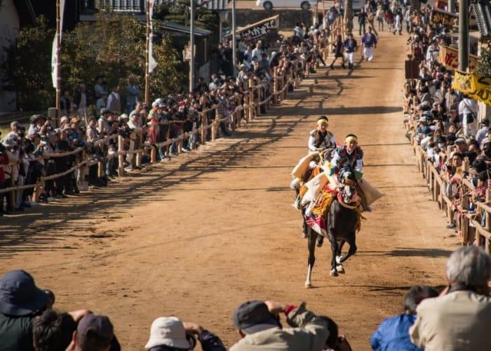 お供馬の走り込み