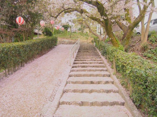 川之江城桜2