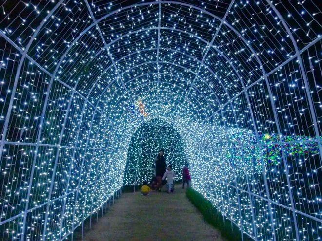 タオル美術館_愛媛県イルミネーション2016