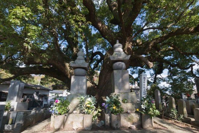 村上雅房夫妻の墓
