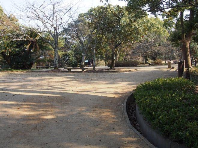 道後公園歩道1