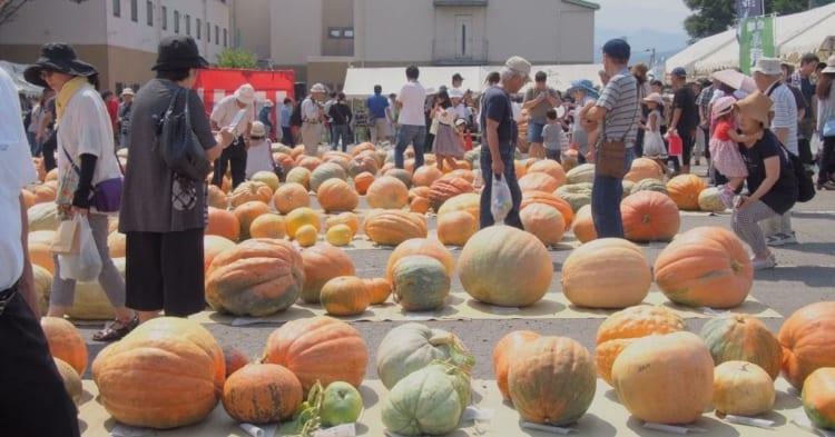 どてかぼちゃカーニバルアイキャッチ