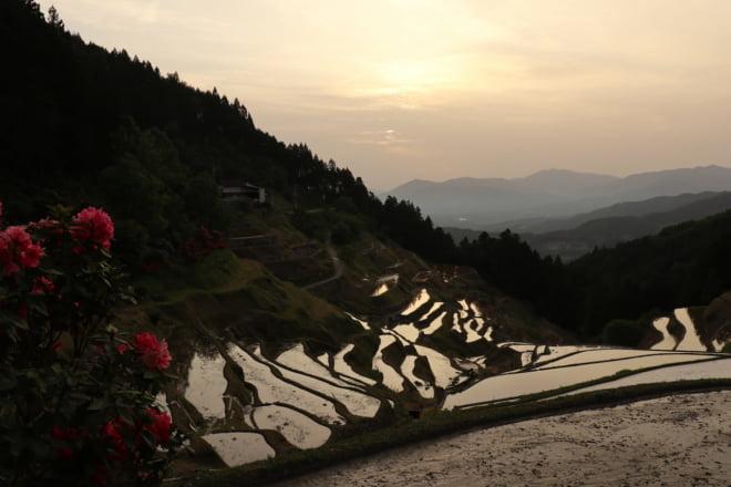 棚田と夕日3