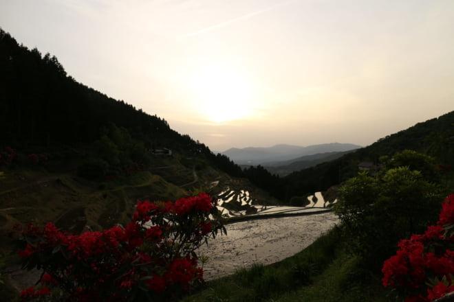 棚田と夕日8