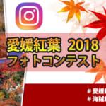 えひめの紅葉フォトコン2018