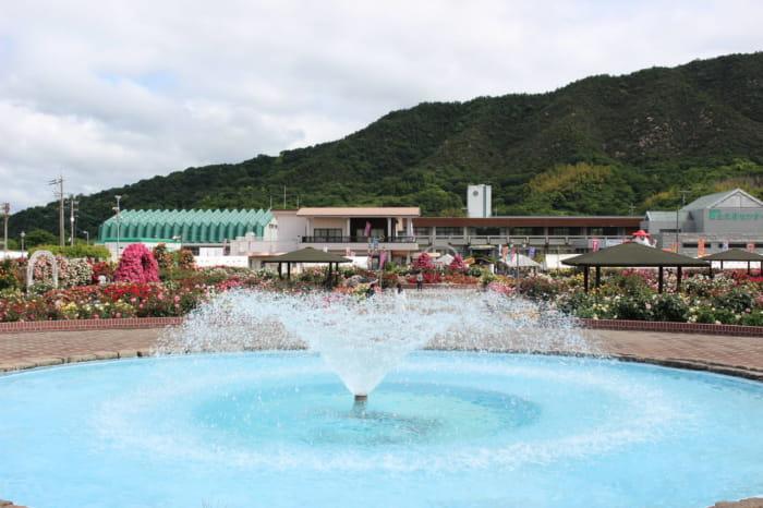 バラ公園の噴水