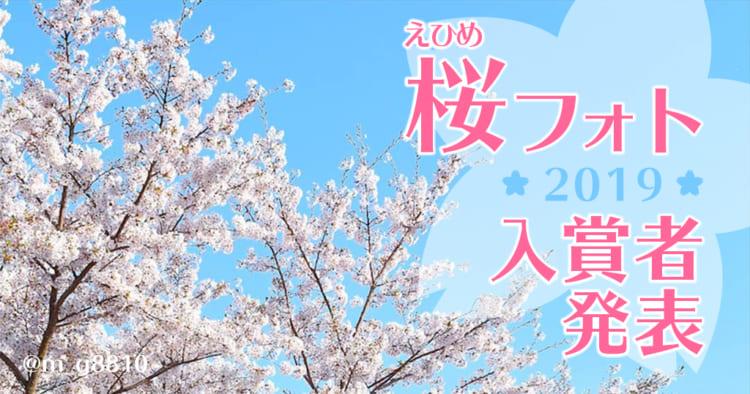 愛媛県・桜フォトコンテスト2019入賞者発表