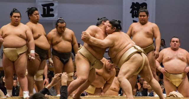 大相撲今治場所での取り組み