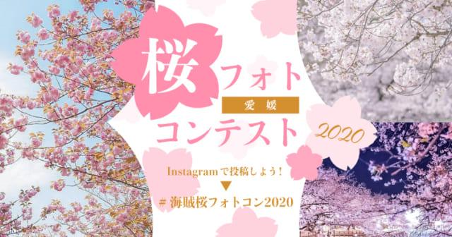愛媛さくらフォトコンテスト~Instagram#海賊桜フォトコン2020