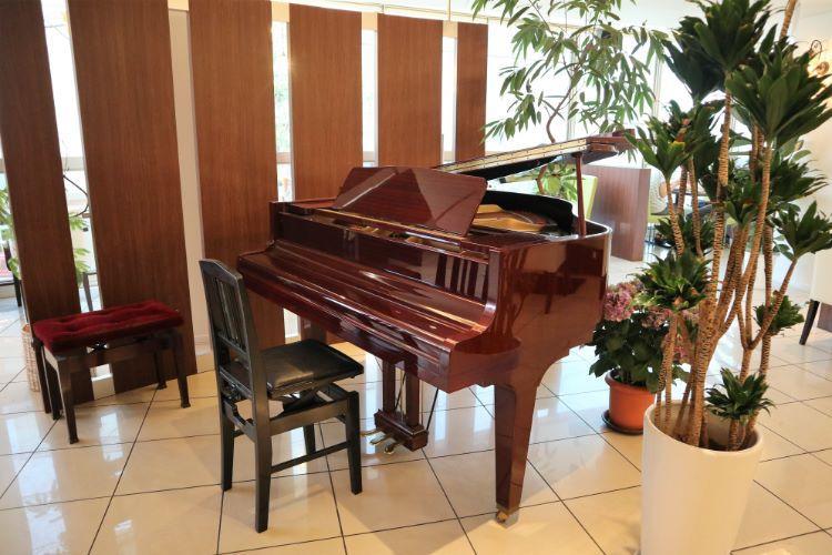 かむ グランドピアノ