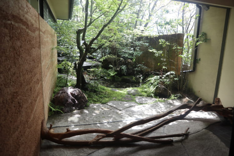 萩 中庭2