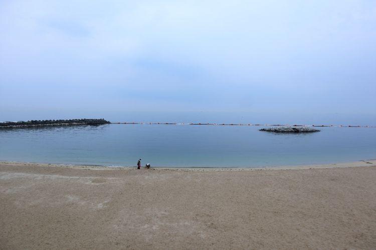 道の駅ふたみ 海
