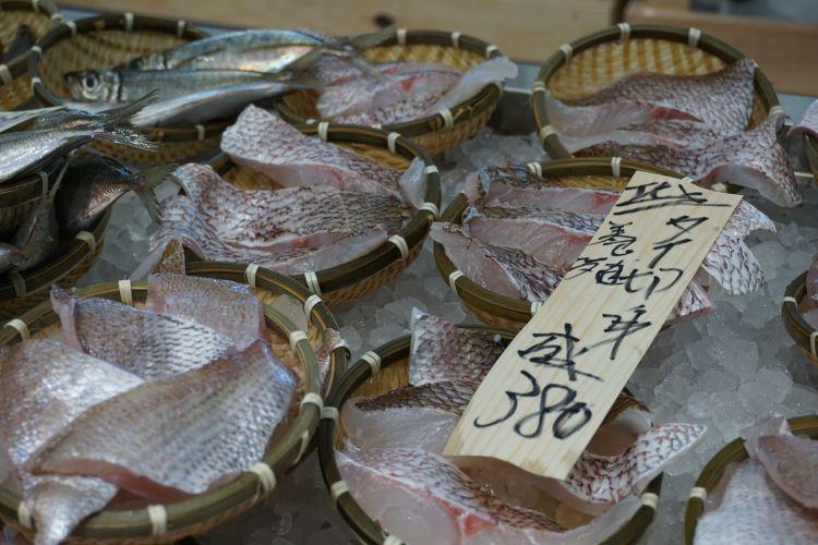 いとまちマルシェ魚2