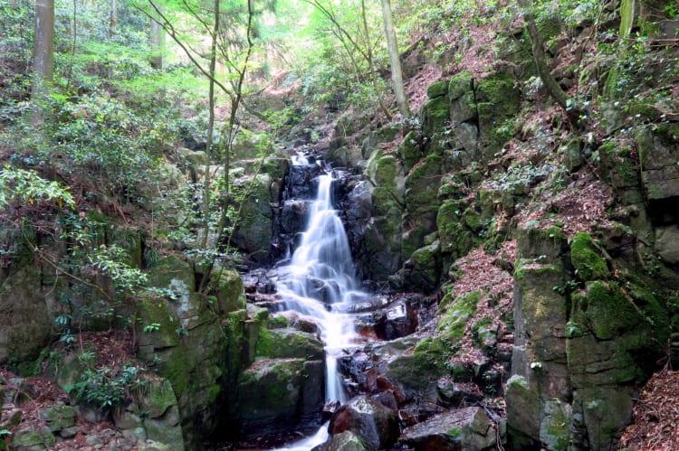 白糸の滝10