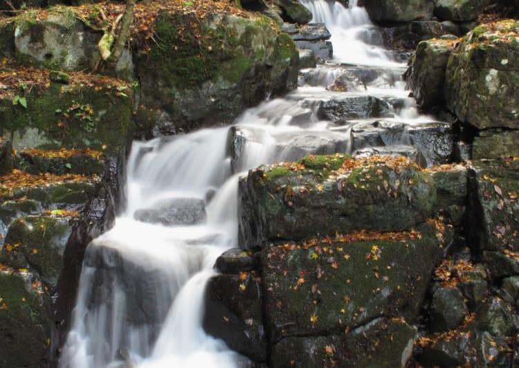 白糸の滝14