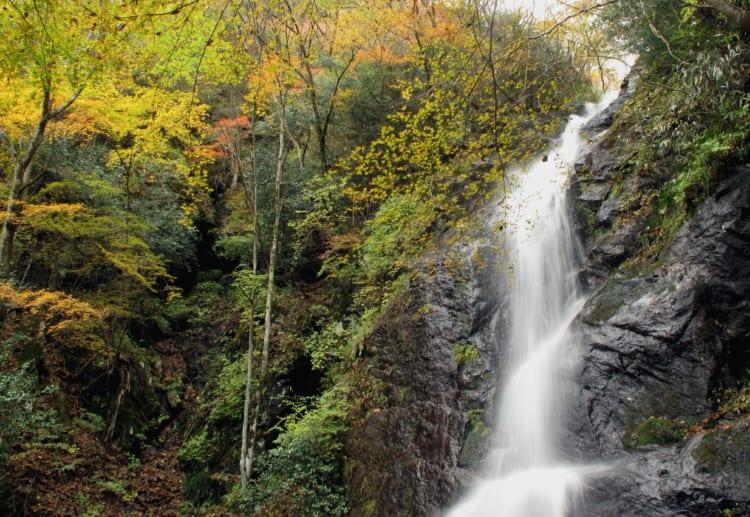 白糸の滝15