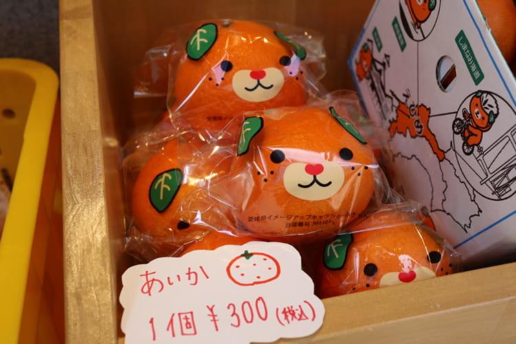 みかん×みかん 柑橘2