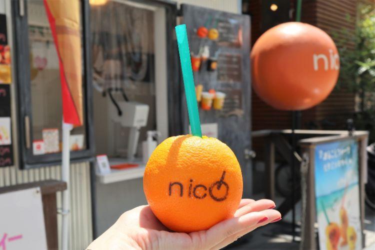 nico まるごとオレンジ2