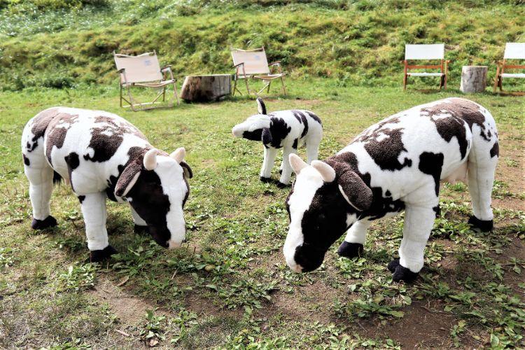 カルスト珈琲 牛のぬいぐるみ