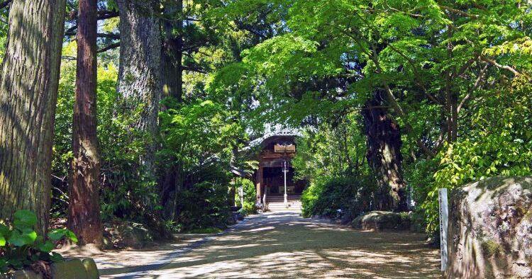 浄瑠璃寺 アイキャッチ