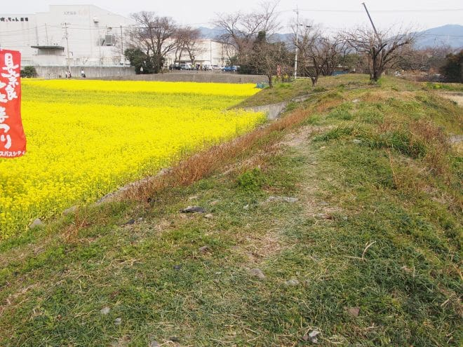 見奈良東側丘