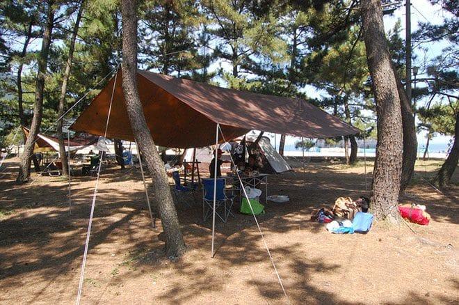 弓削島キャンプ場松原海岸