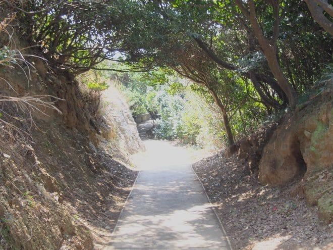 佐田岬灯台遊歩道1