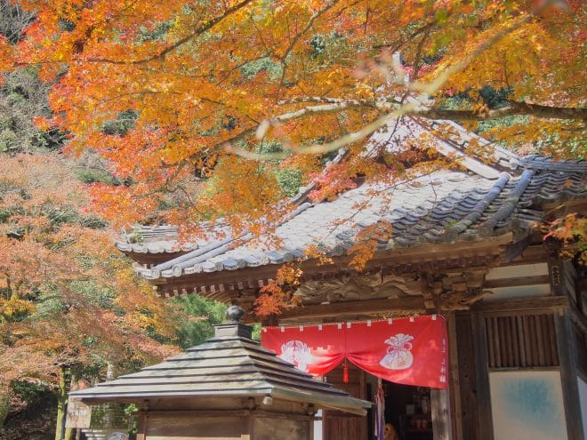西山興隆寺の紅葉1