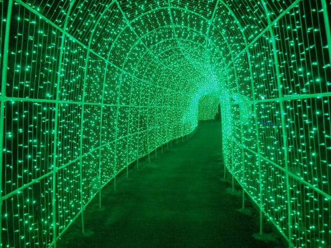タオル美術館イルミネーション光のトンネル4