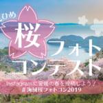 桜フォトコン2019アイキャッチ
