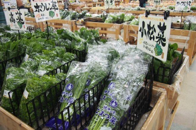 あさつゆ野菜1