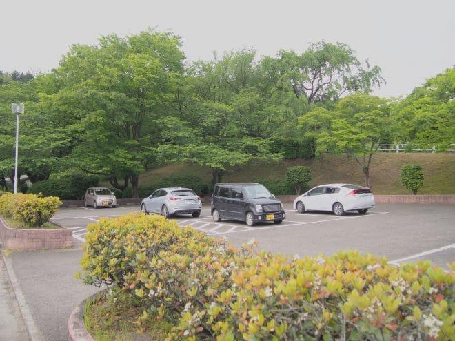 池田池公園駐車場1