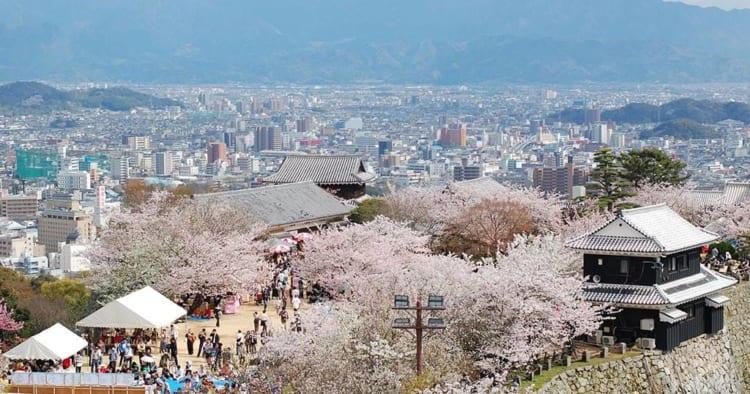 桜2017アイキャッチ