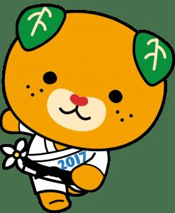 柔道_カラー