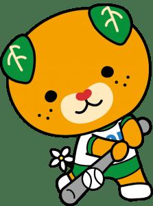 高等学校野球_カラー