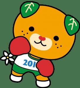 ボクシング_カラー