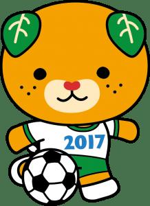 サッカー_カラー