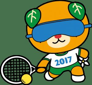 ブラインドテニス_カラー