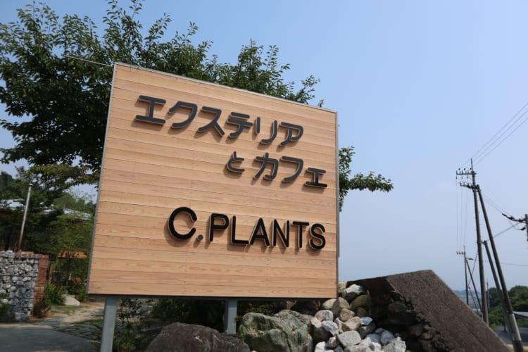 c.plants看板