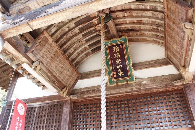西法寺薄墨桜06