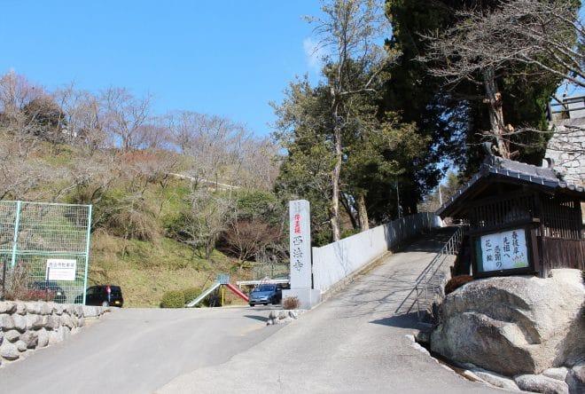 西法寺薄墨桜17
